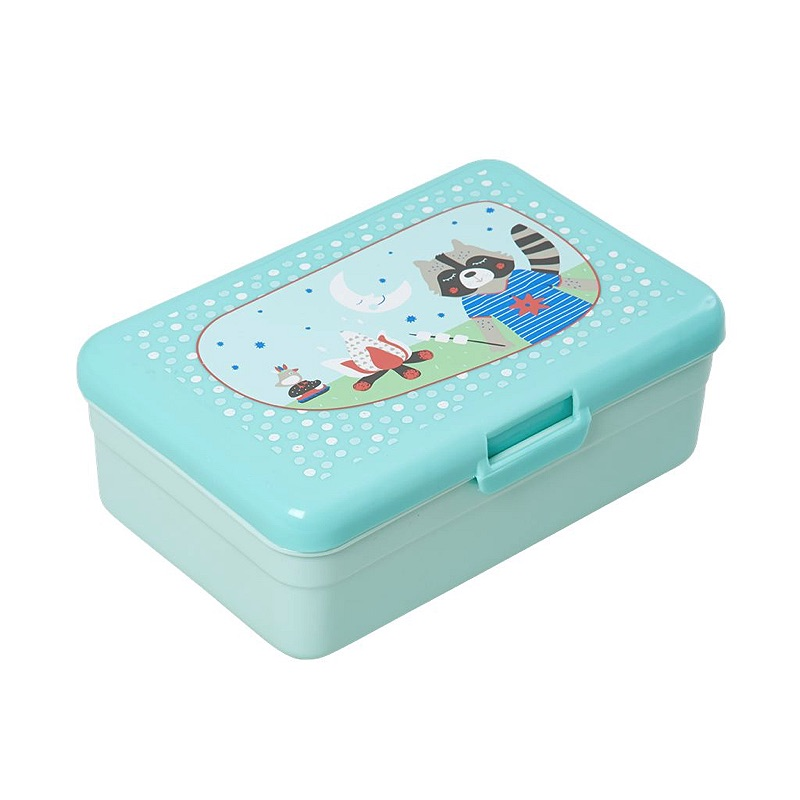 Kids Lunchbox with Boys Happy Camper Print - mint