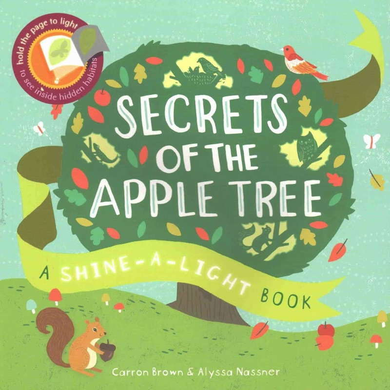 Secrets of the apple tree shine-a-light