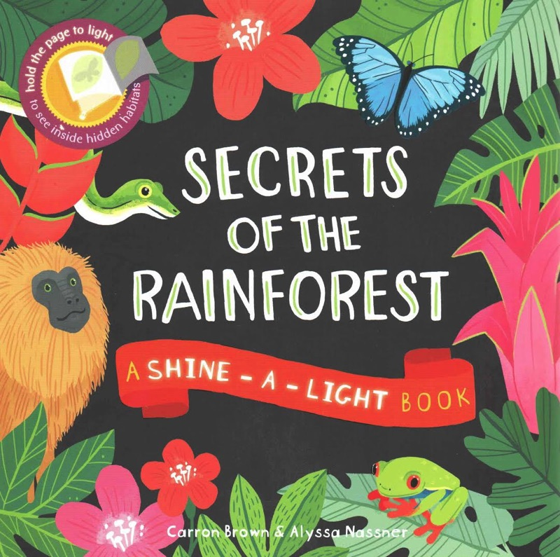 Secrets of the rainforest shine-a-light